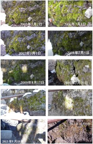 Moss20052014